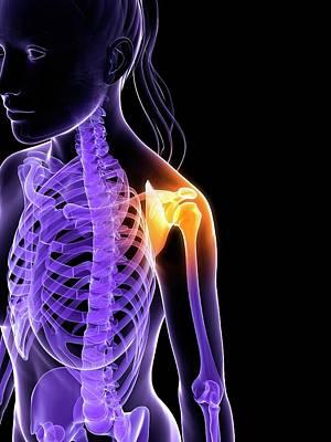 Female Shoulder Bones Art Print by Sebastian Kaulitzki