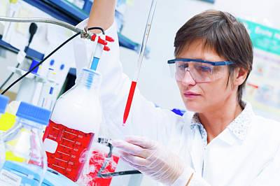 Technician Photograph - Female Technician Working In A Lab by Wladimir Bulgar