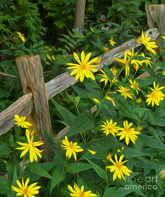 Fence And Flowers Art Print by Brian Mollenkopf