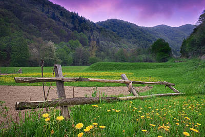Photograph - Fence And Flowers by Giovanni Allievi