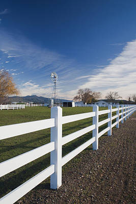 Winery Photograph - Fence At A Winery, Rutherford, Wine by Panoramic Images