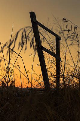 Photograph - Fence At Sunset I by Marco Oliveira