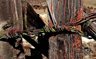 Buckaroo Photograph - Fence Closure Harney County Oregon by Michele AnneLouise Cohen