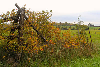 Photograph - Fence Corner In Autumn by Jim Vance