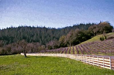 Fence Curves Art Print by John K Woodruff