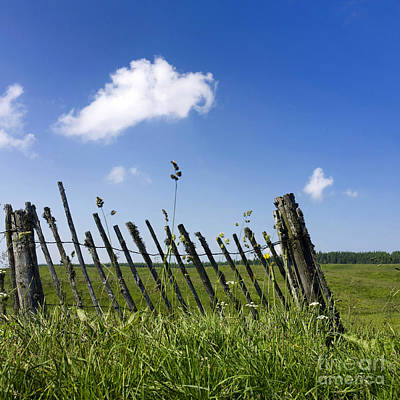 Fence In A Pasture Art Print by Bernard Jaubert