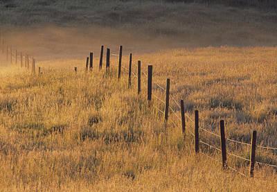 Prairie Style Photograph - Fence In Pasture Near Cochrane by Darwin Wiggett