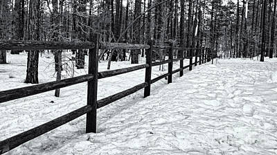 Mark Myhaver Royalty Free Images - Fence In Winter 06 Royalty-Free Image by Mark Myhaver