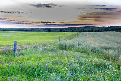 Fence Line Dawn Art Print
