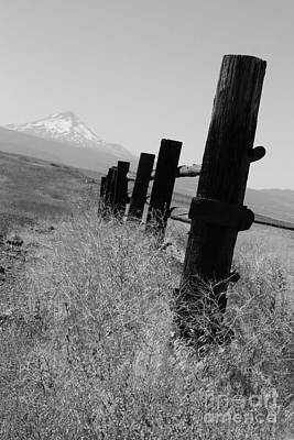Photograph - Fence Line by Deena Otterstetter