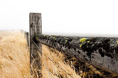 Photograph - Fence Line by Greg Wyatt