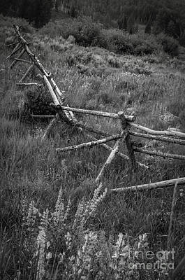 Photograph - Fence Line II by David Waldrop