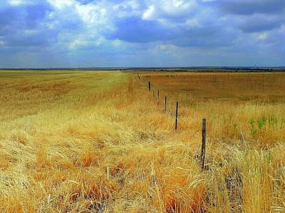 Wall Art - Photograph - Fence Line by Mickey Murphy