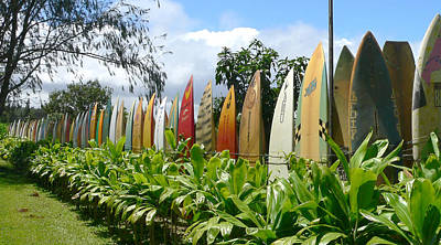 Photograph - Fence Of Old Surfboards by John Orsbun