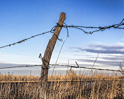 Photograph - Fence Post And Barbed Wire by Bill Kesler