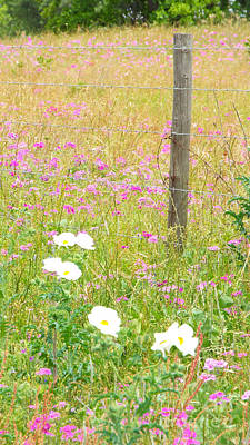 Photograph - Fence Post And Flowers by Audrey Van Tassell