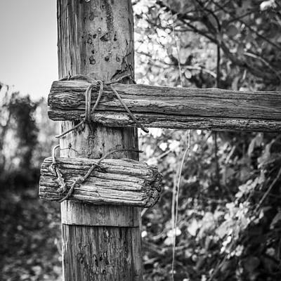 Photograph - Fence Post by Gary Gillette