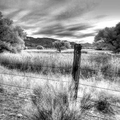 Fence Post In The Meadow Art Print
