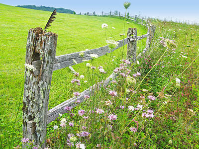 Photograph - Fence Post by Melinda Fawver