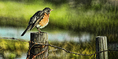 Photograph - Fence Post Robin by Bill Kesler