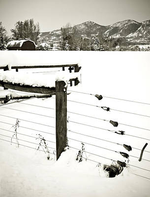 Photograph - Fence Pulls In Winter by Marilyn Hunt