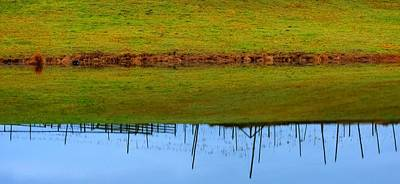 Jerry Sodorff Royalty-Free and Rights-Managed Images - Fence Reflection 20788 by Jerry Sodorff