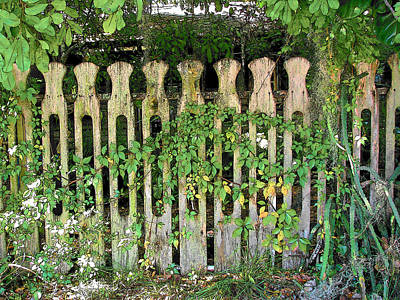 Photograph - Fence Seven by Strangefire Art       Scylla Liscombe