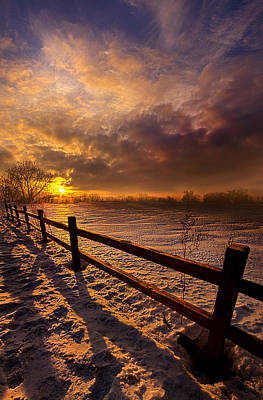 Red Leaves Snow Wall Art - Photograph - Fence Walking by Phil Koch