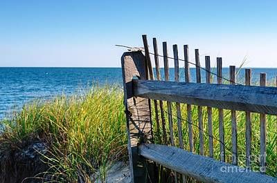 Fence With A Great View Art Print by Mike Ste Marie