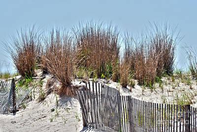 Photograph - Fenced In - Boardwalk by Crystal Harman