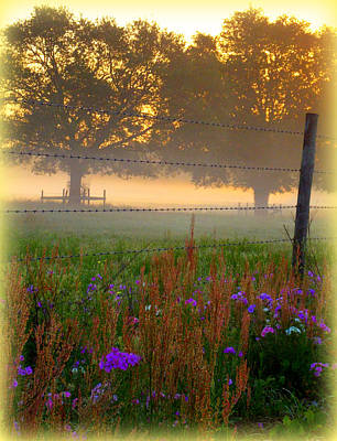Photograph - Fenced In Fog by Sheri McLeroy