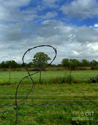 Photograph - Fenced In by Peter Piatt