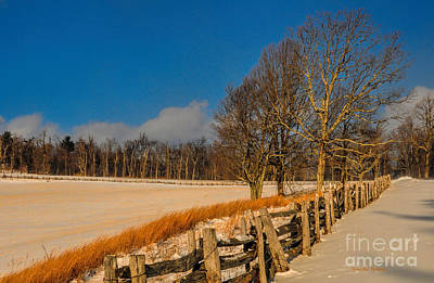 Photograph - Fenced In Snow by Randy Rogers