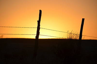 Photograph - Fenced In Sunset by Clarice  Lakota