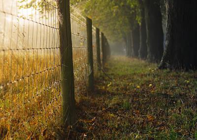 Fenced Off Art Print by Chris Fletcher