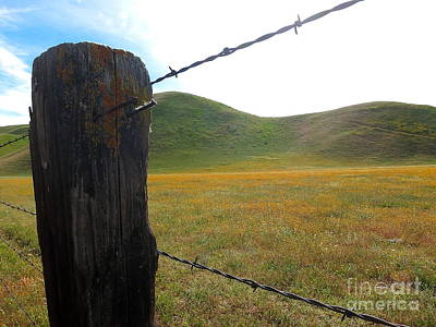 Photograph - Fencepost On The 58 by Paul Foutz