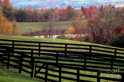 Photograph - Fences In The Fall by Eva Kato