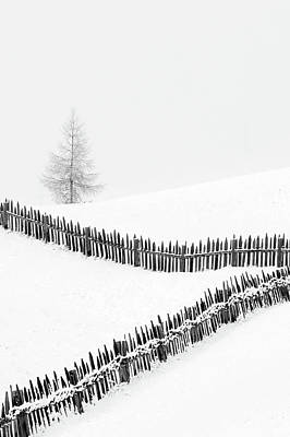 Fences: Playing With Lines Art Print