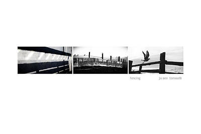 Photograph - Fencing Triptych Image Art by Jo Ann Tomaselli