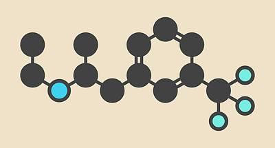 Heart Disease Photograph - Fenfluramine Weight Loss Drug Molecule by Molekuul