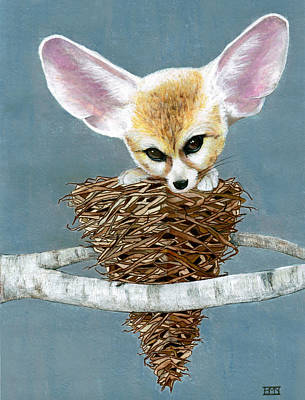 Pyramids Mixed Media - Fennec In A Tree by Heather M Nelson