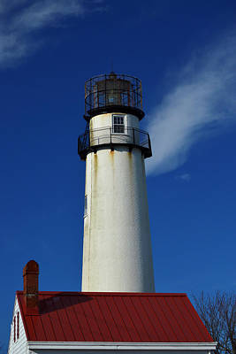 Photograph - Fenwick Island Light Stands Tall by Bill Swartwout