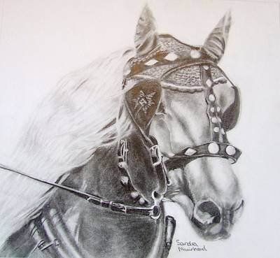 Drawing - Fer A Cheval by Sandra Muirhead