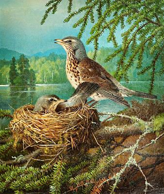 Sea Birds Painting - Ferdinand Von Wright Faglar I Boet by MotionAge Designs