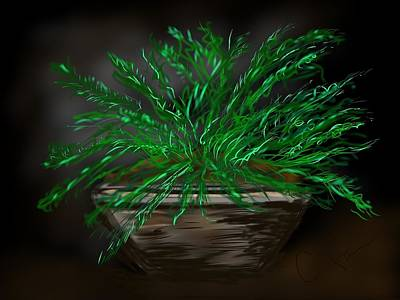 Art Print featuring the digital art Fern by Christine Fournier