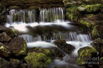 Photograph - Fern Falls 25 by Paul W Faust -  Impressions of Light