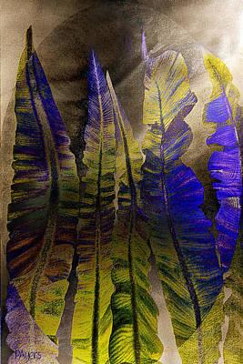Fern Forest Art Print by Paula Ayers
