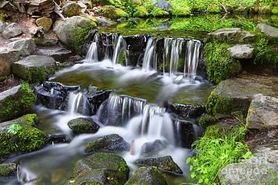 Photograph - Fern Grotto by Bill Singleton