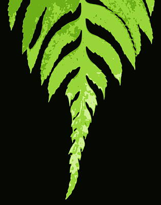Photograph - Fern Leaf by Ramona Johnston