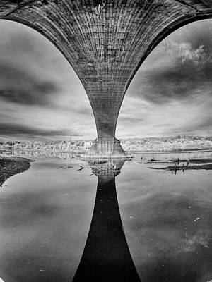 Photograph - Fernbridge Flowering In Black And White by Greg Nyquist